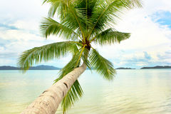 Beautiful Tropical Paradise Royalty Free Stock Photography