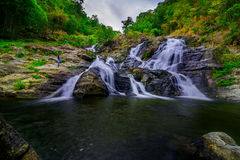 Beautiful tropical rainforest and stream in deep forest, Stock Photos
