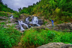 Beautiful tropical rainforest and stream in deep forest, Stock Photography