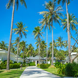 Beautiful tropical resort bungalows Royalty Free Stock Photo