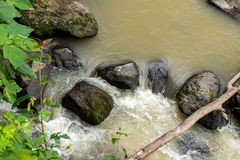 Beautiful tropical river in rainforest jungle of Bali island, Indonesia. Royalty Free Stock Photos