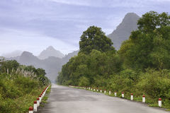 Beautiful tropical road Stock Photography