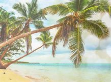 Beautiful tropical sand beach on island with Royalty Free Stock Photography