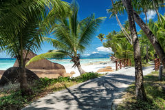 Beautiful tropical sandy beach with a shadow of the coconut palm tree Stock Photo