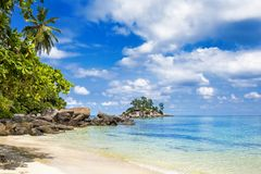Tropical island beach with palm tree Seychelles royalty free stock photo