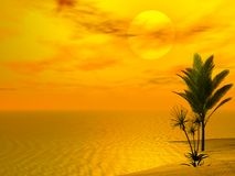 Beautiful Tropical Scene. Computer generated 3d image stock illustration