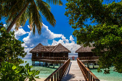 Beautiful tropical scenery, Maldives. Summer travel concept, beautiful blue lagoon in Indian ocean, exotic island with tropical palm trees, wonderful landscape Royalty Free Stock Photo