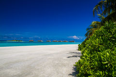 Beautiful tropical scenery royalty free stock photos