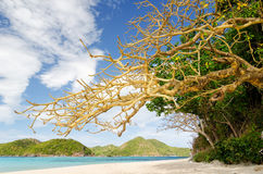 Beautiful tropical sea under blue sky Stock Images