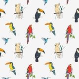 Beautiful tropical seamless pattern with different exotic birds sitting on tree branches and flying on white background Stock Photos