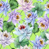 Beautiful tropical seamless pattern. Large lotus flowers with leaves and stems on bright green background. Hand drawn illustration. Watercolor painting. Design Royalty Free Stock Images