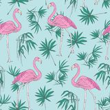 Beautiful tropical seamless pattern with pink flamingo birds and green jungle palm foliage hand drawn on blue background. Vector illustration for backdrop Stock Photos