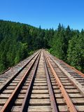Wooden railroad tracks bridge on a goinig straight into the spruce forest - Train royalty free stock image