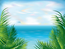Beautiful Tropical summer background, Royalty Free Stock Image