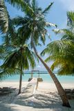 Beautiful tropical sunny beach with palm trees and ocean at the island Royalty Free Stock Photos