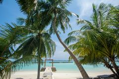 Beautiful tropical sunny beach with palm trees and ocean at the island at resort Stock Photo