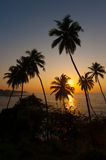 Beautiful tropical sunrise Royalty Free Stock Photography