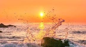 Beautiful tropical sunrise. Beautiful tropical sunrise on the beach Stock Photos