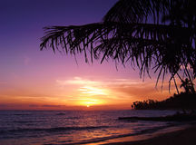 Beautiful tropical sunset. At sea Stock Photo