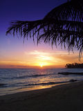 Beautiful tropical sunset. A Beautiful tropical sunset at sea Royalty Free Stock Image