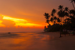 Beautiful tropical sunset Royalty Free Stock Photo