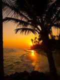 Beautiful tropical sunset Stock Image
