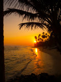 Beautiful tropical sunset royalty free stock image