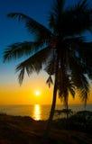 Beautiful tropical sunset Stock Images