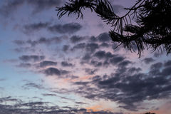 Beautiful tropical sunset on Bali island, Indonesia. Beautiful tropical sunset on Bali island Stock Photography