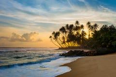 Beautiful tropical sunset with palm trees. Wijaya beach, Sri Lanka Stock Photos