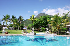 Beautiful tropical swimming pool Stock Image