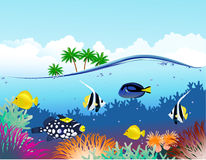 Beautiful tropical underwater world Stock Photos