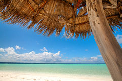 Beautiful tropical view: beach in Maldives Stock Image