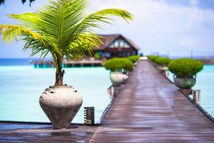 Beautiful tropical view of perfect ideal island Stock Photography