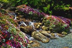 Beautiful tropical waterfall Royalty Free Stock Image