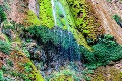 Beautiful tropical waterfall El Limon. Beautiful view of tropical waterfall Al Limon in Samana Bay, Dominican REpublic Stock Image