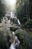 Beautiful tropical waterfall falling. Blurred and selective focus image green forest . beautiful tropical waterfall falling down from the mountain. green mossy stock images