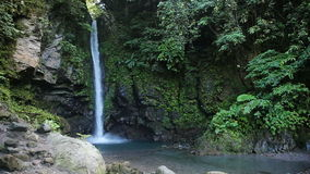Beautiful tropical waterfall. Waterfall in the jungle.tropical rain forest with waterfall.Waterfall on the island of Camiguin (Philippines stock video