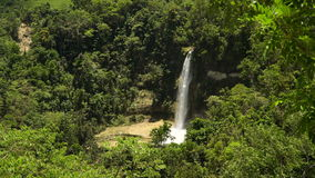 Beautiful tropical waterfall. Philippines Bohol island. Tropical waterfall in green forest in jungle. Waterfall with natural swimming pool in a mountain river stock video