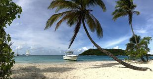 Beautiful tropical white beach and coconut palm trees. Stock Photography