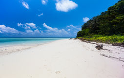 Beautiful Tropical white Sand Beach and crystal clear water. Sip. Adan island, Malaysia Royalty Free Stock Photos