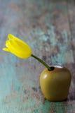 Beautiful tulip in a ceramic vase Stock Image