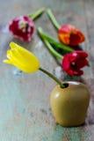 Beautiful tulip in a ceramic vase Stock Images