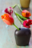 Beautiful tulip in a ceramic vase Stock Photography