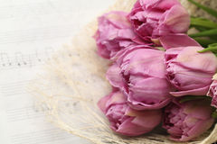 Beautiful tulip flowers on note paper Stock Photos