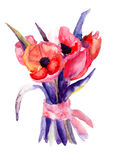 Beautiful Tulips flowers. Watercolor painting Royalty Free Stock Images