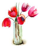 Beautiful Tulips flowers. Beautiful Red Tulips flowers, Watercolor painting Royalty Free Stock Photo
