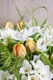 Beautiful tulips and freesia flowers. Royalty Free Stock Photo