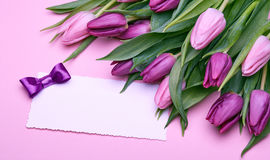 Beautiful tulips and greeting card. Greeting card, bouquet of beautiful flowers, buds of spring tulips, bow from satin ribbon, the gift set on a pink background Stock Image