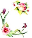 Beautiful Tulips and Hydrangea flowers Royalty Free Stock Image